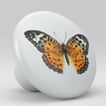Butterfly Ceramic Knob Design 2