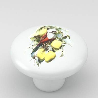 Antique Bird Art Ceramic Knob Vanity Design 5